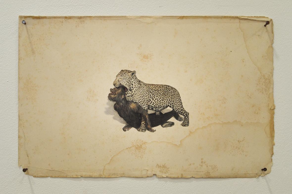 JUAN ZAMORA 'Bajo el cielo de la boca (de un leopardo)'  Drawing on paper. 16 x 25 cm. 2014