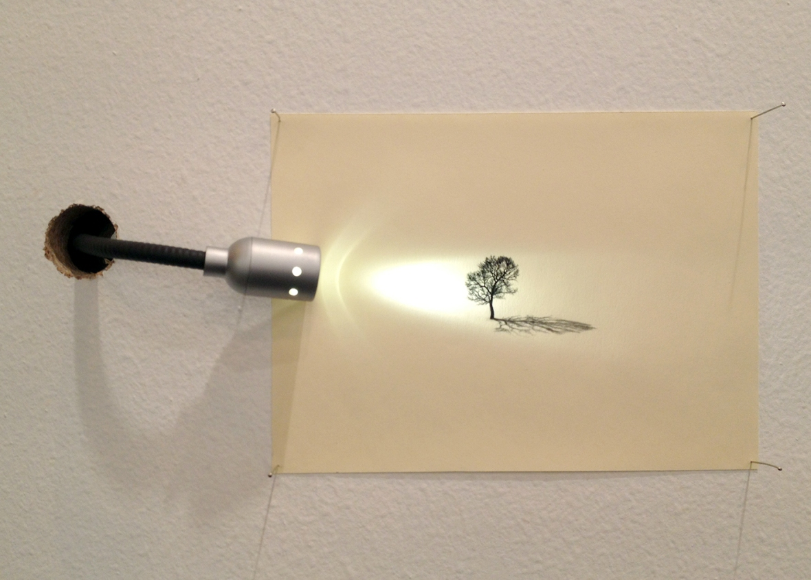 JUAN ZAMORA . 'A tree and its shadow ' Drawing on paper and light projected on it. 12 x 17 cm. 2013